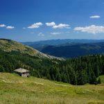 """Започва кампания за създаване на природен парк """"Чернатица"""" по проект на СФ """"Инди Рома 97"""""""